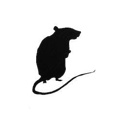 Rat Betty